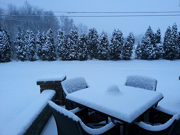 Snow on Jan 2