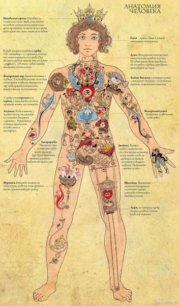 1324222046_human_anatomia_full