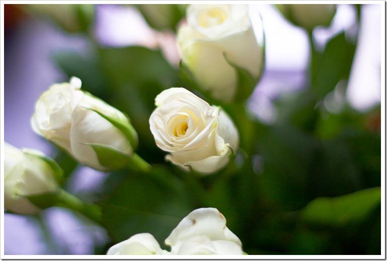 Blumen_Kateryna_K-2