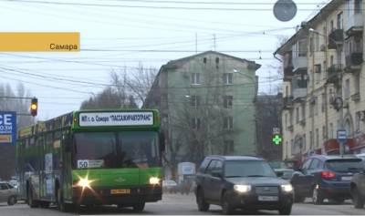 avtobus_50_terra_0