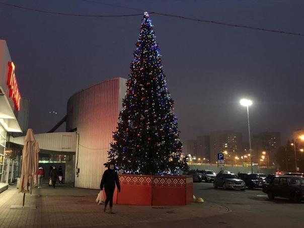 2 ноября, Санкт-Петербург, Улица Жукова.