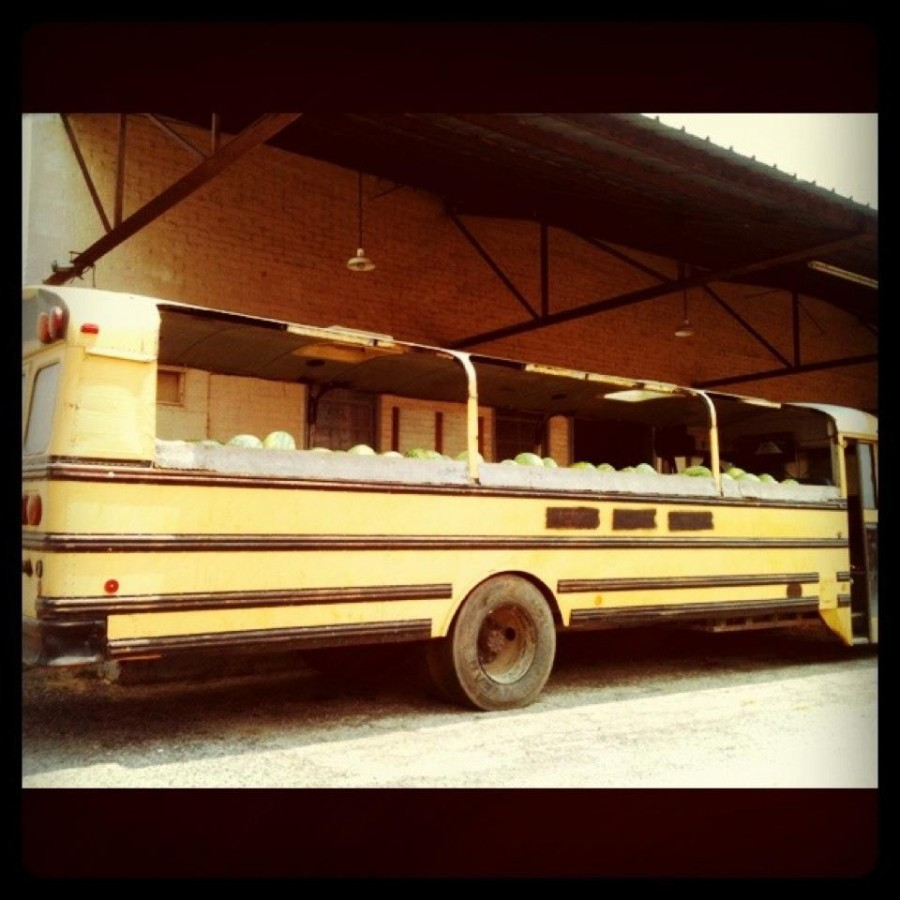 Watermelon Bus