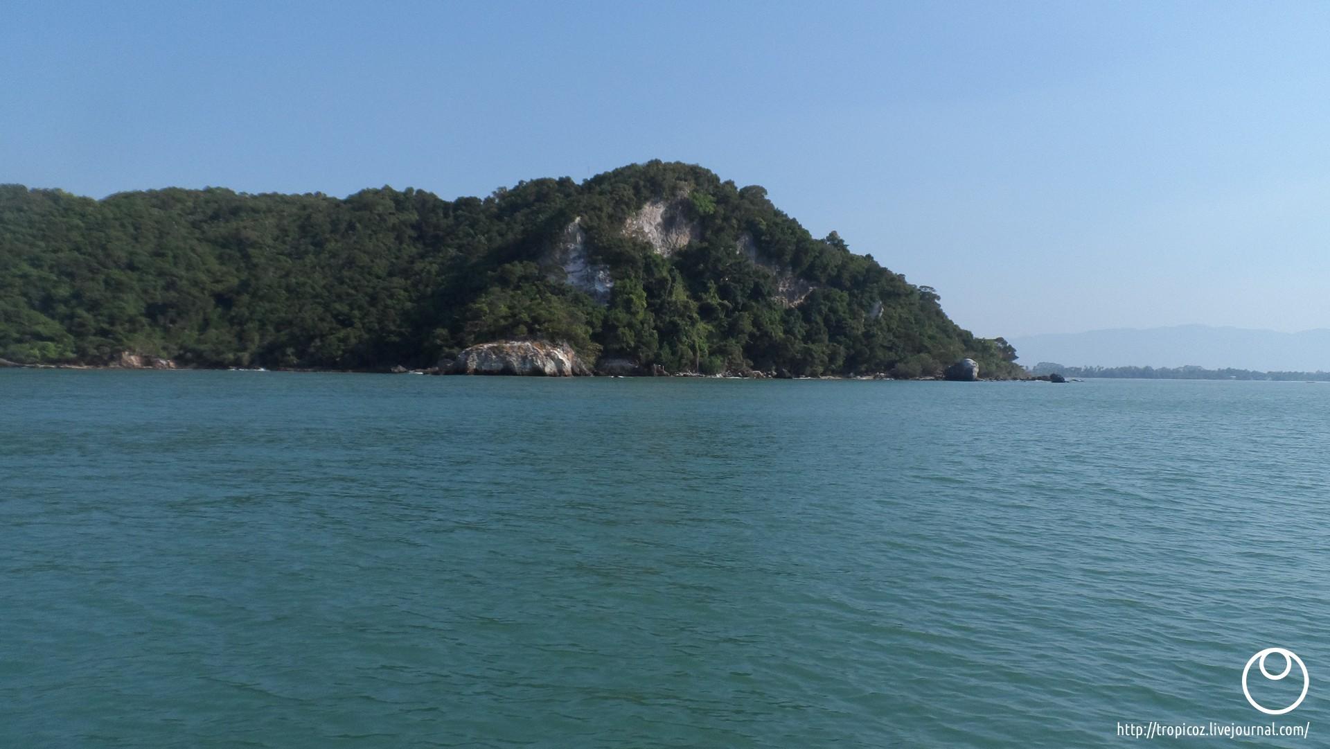 Острова зелёных черепашек * ТропикоZ - 00017