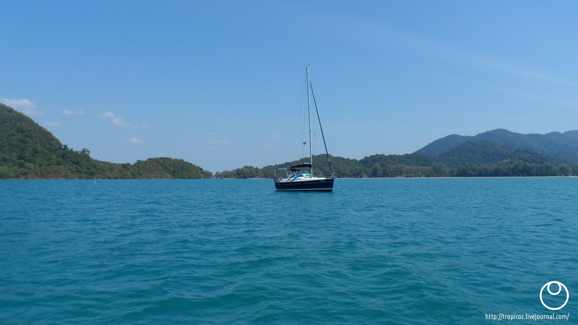 Острова зелёных черепашек * ТропикоZ - 00022