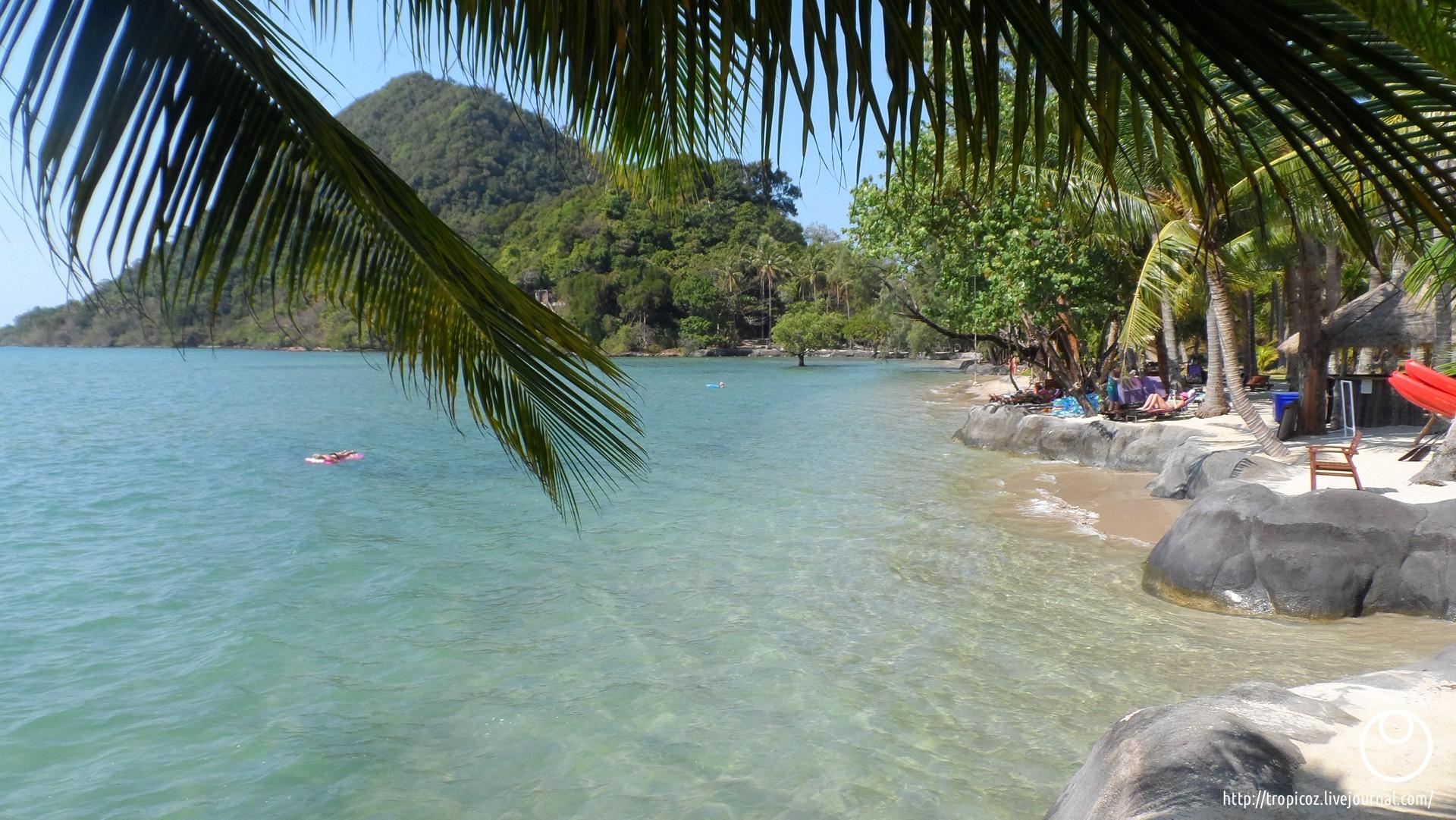 Острова зелёных черепашек * ТропикоZ - 00025