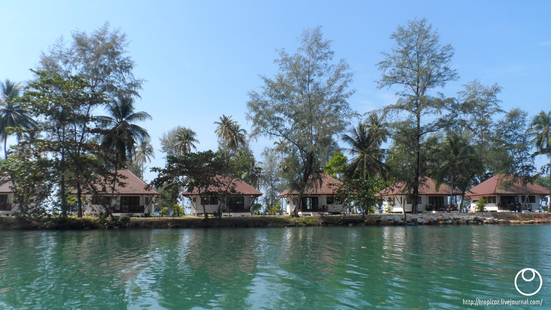 Острова зелёных черепашек * ТропикоZ - 00029