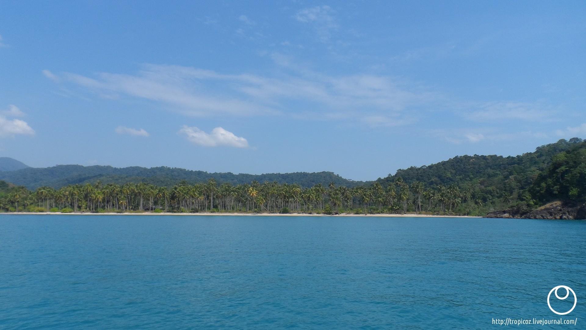 Острова зелёных черепашек * ТропикоZ ---