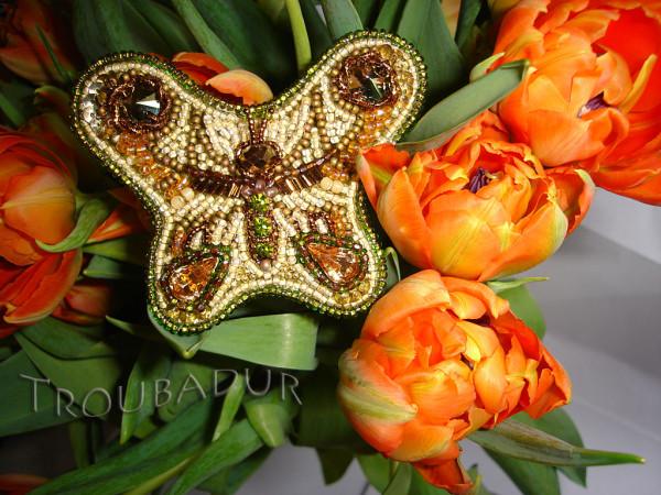 Бабочка-красавица-ЖЖ