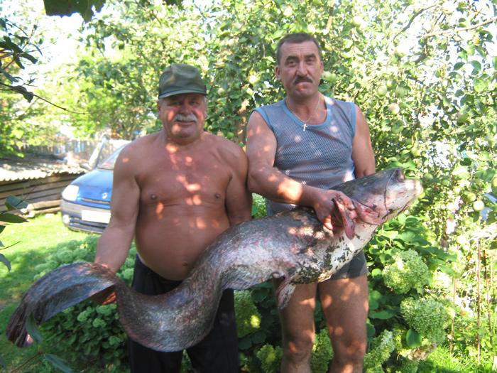 рыбалка в кыргызстане прогноз клева