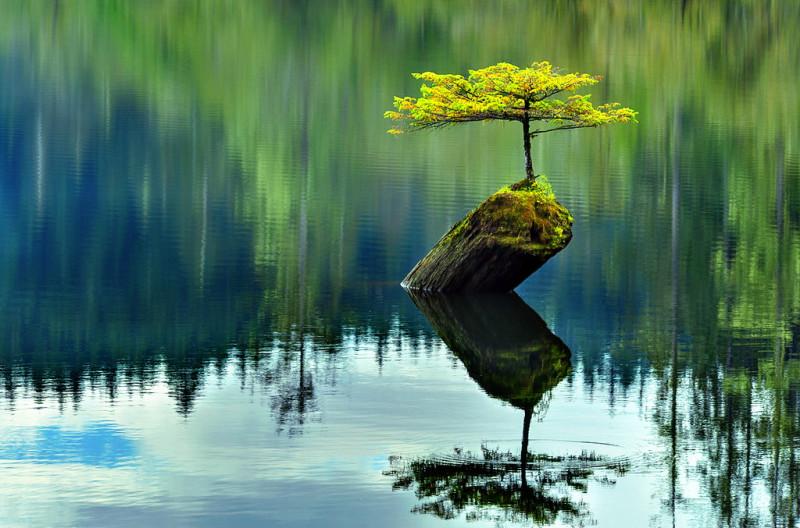 «Настоящее путешествие - это не движение к новым границам, а возвращение к себе. Но пройти этот путь может только тот, кто смотрит себе под ноги, а не восхищается собственным отражением.» — Лао-Цзы