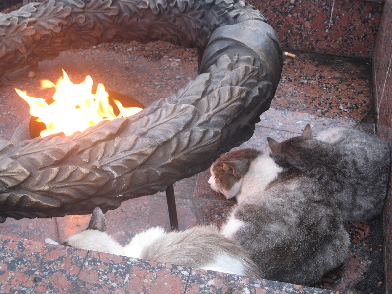 Серпухов, ч.1 - спящий красавец -