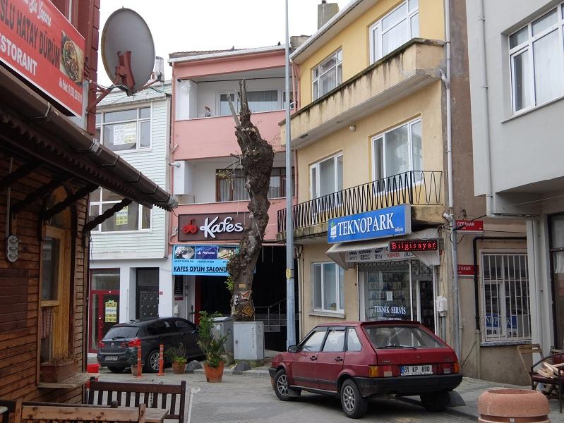 DSCF9271.JPG Шиле - турецкий курорт Шиле – турецкий курорт 2566728 original