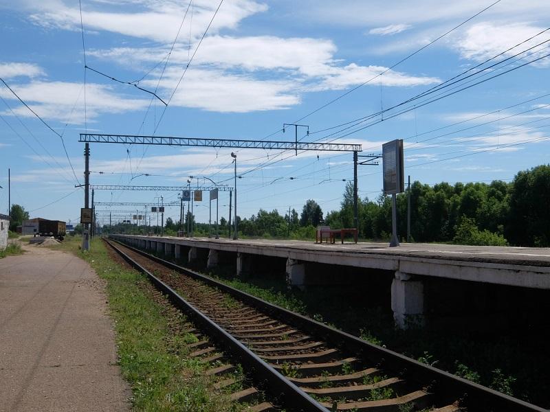 DSCF3381.jpg