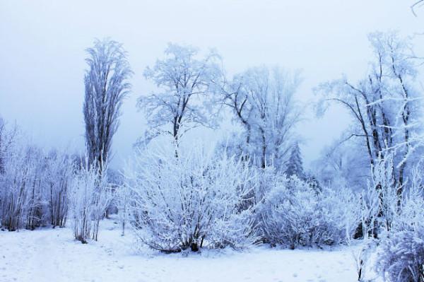 зима волгоград!!!