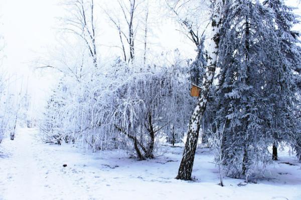 зима!!!!