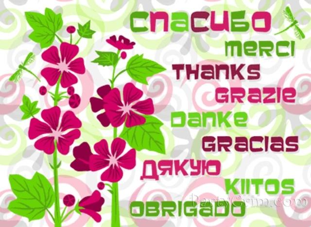 Большое спасибо за поздравления на английском