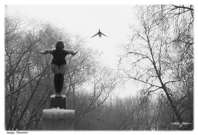 Полёт.