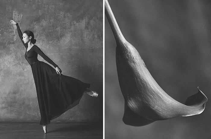 """Проект """"Цветы и балерины""""  Фотохудожник Юлия Артемьева (Julia Artemyeva)"""