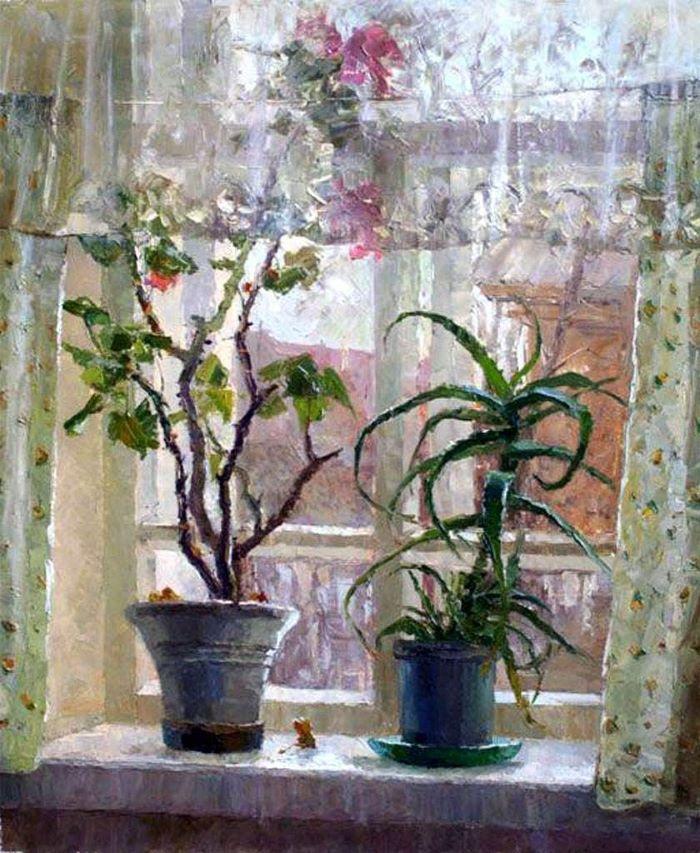 Комнатные цветы на окне