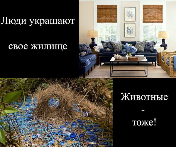 8 жилье