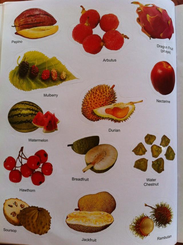 названия фрукты и фото