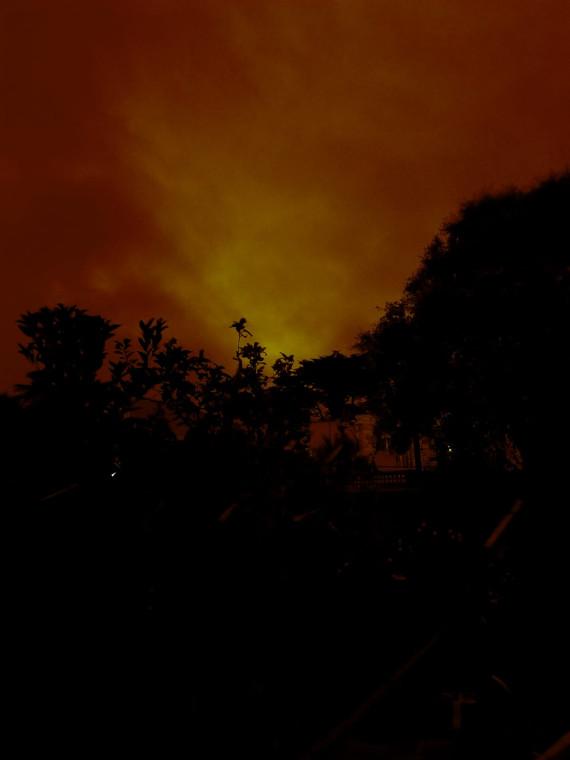 Сан-Франциско, полдень, снято в ПОЛДЕНЬ  в нашем back yard.  K 2 часам пополудни стало еще темнее.
