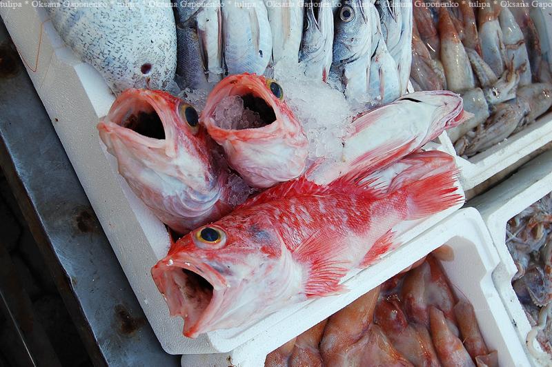 Рыбный рынок в Сицилии