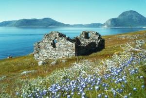 Руины церкви Хвалси, Гренландия