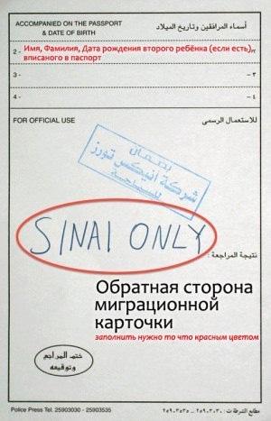Без имени-16 копия
