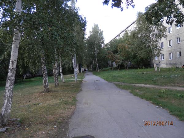 P8140482