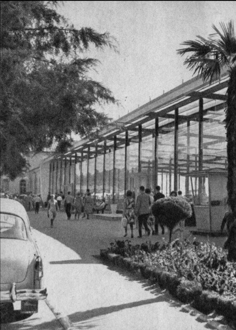 Аэропорт Адлер, 1961 год. Фото из интернета.