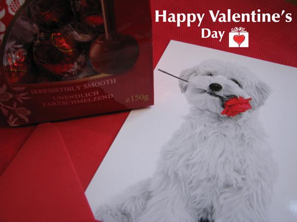 Valentines Day Lj