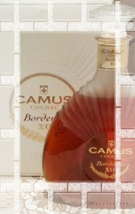 Camus_1a.jpg