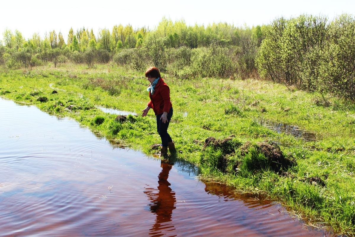Люди на болоте - 2. Пискульку не увидели
