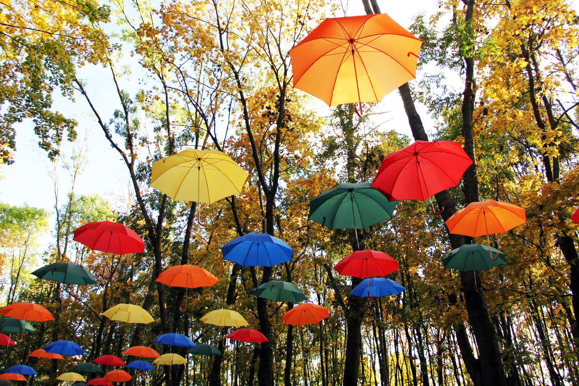 Осень зонт солнце фото