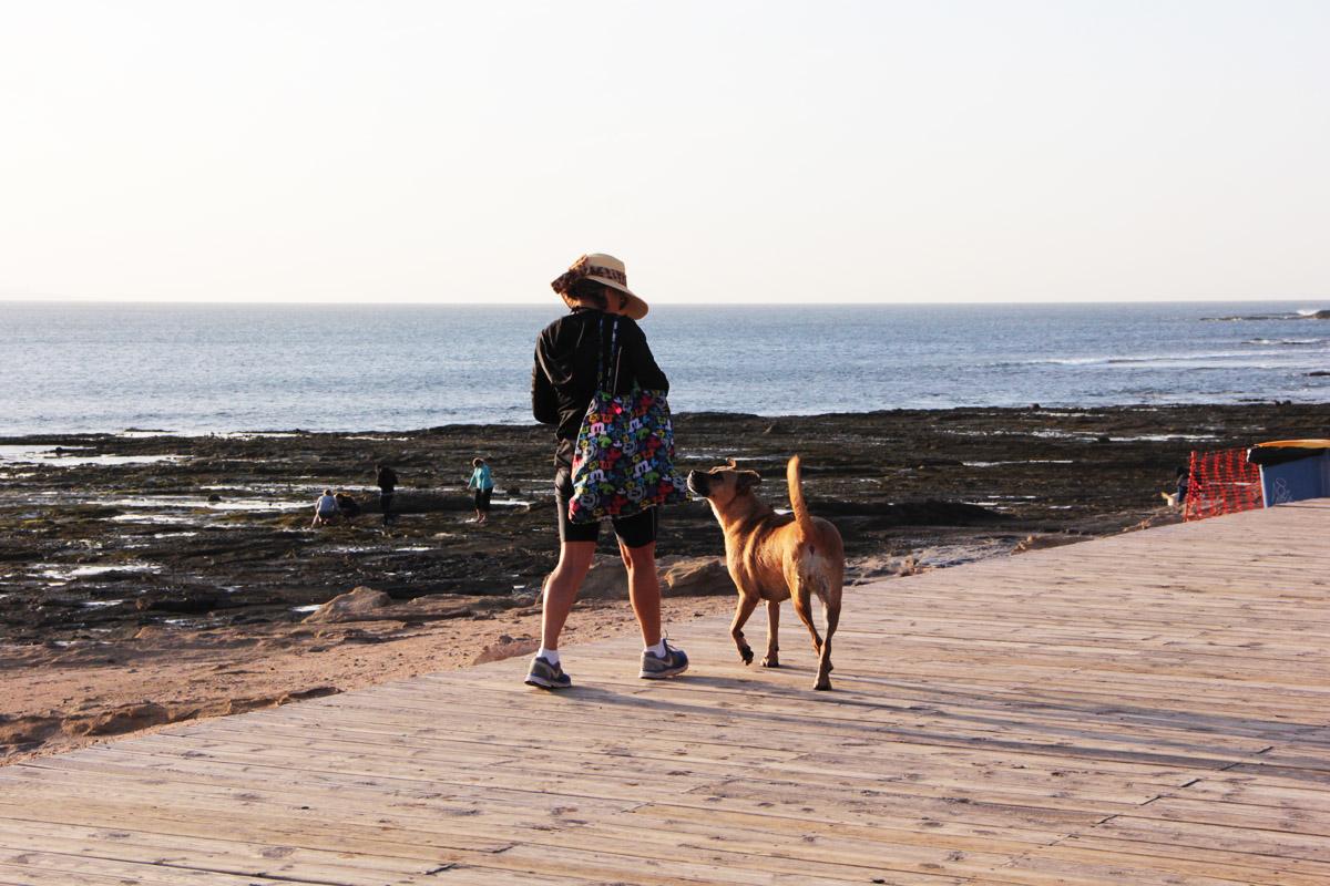 Второй день в Лас Пальмасе: местные ходят с другом