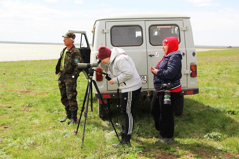 Наблюдение за птицами и охота за тюльпанами в Калмыкии