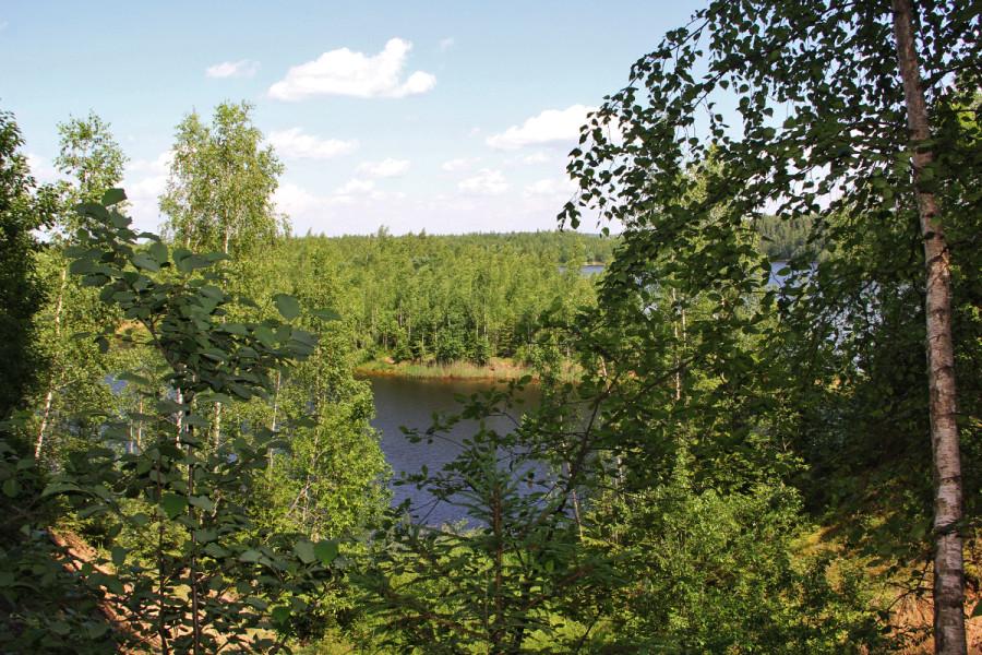Исток Москвы-реки искали, а нашли родник и орхидею