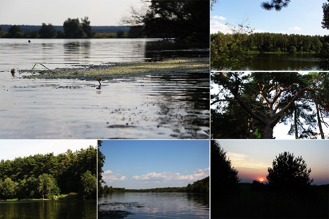 рыбалка в ильинском на верхней москва реке
