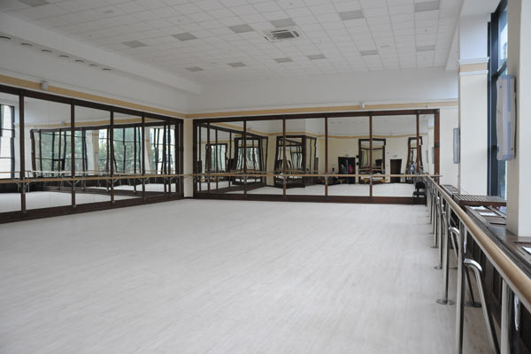 Схема концертного зала омской