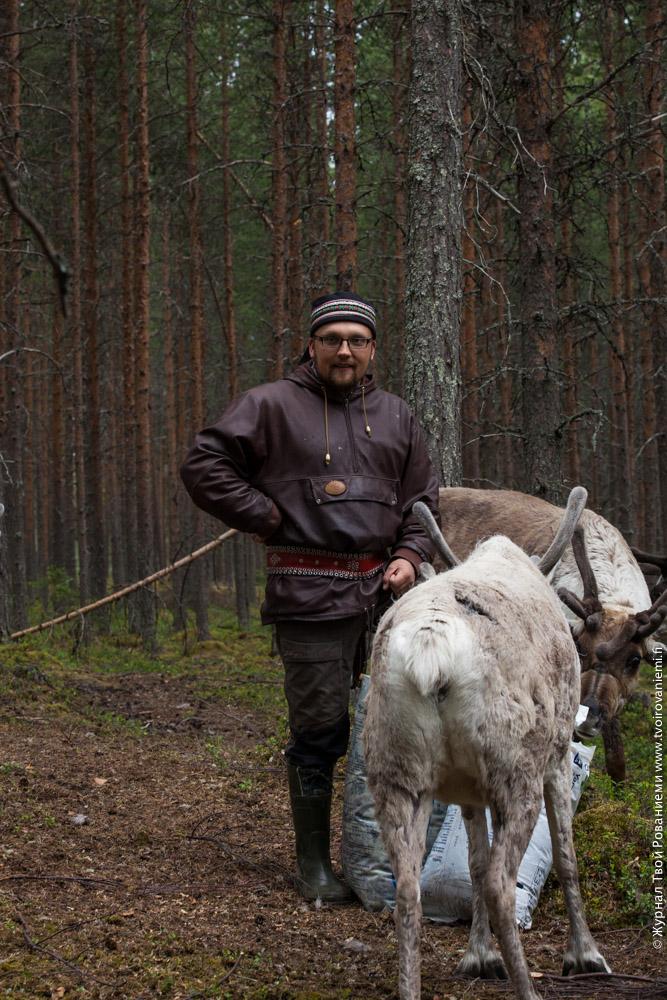 Оленевод со своими оленями на ферме Сиериярви.