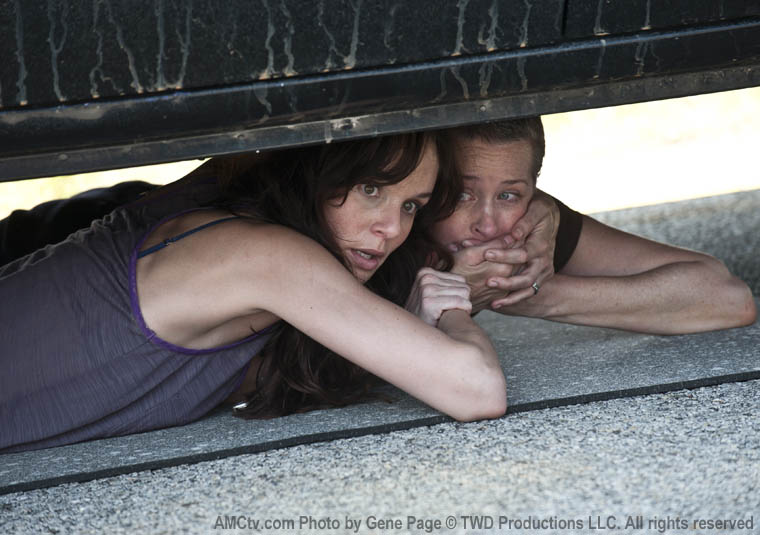 The-Walking-Dead-temporada-2-desmorto.com-5