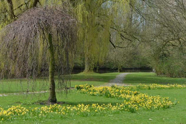 Spring_Amsterdam_27