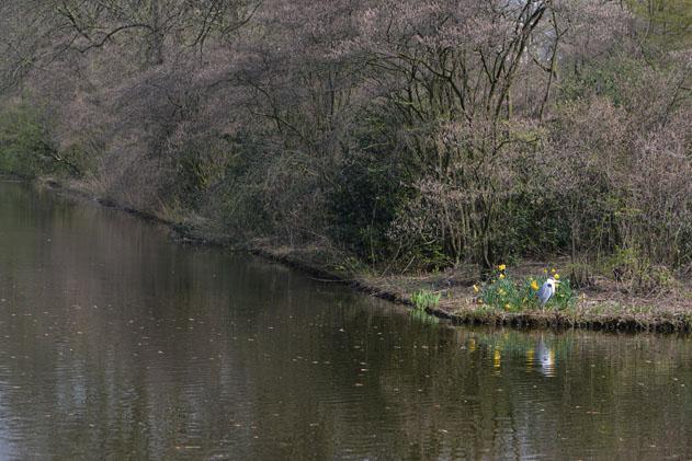 Spring_Amsterdam_64