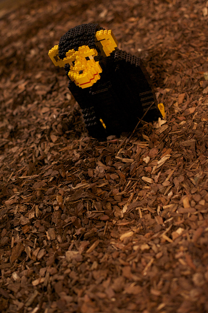 LEGO_World_19