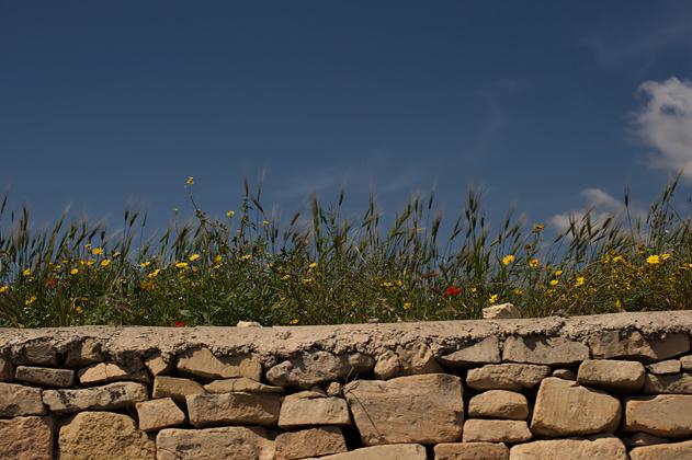 Malta_web_24