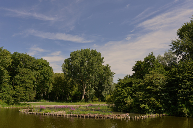 Amsterdam_summer_3