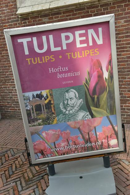Leiden_13