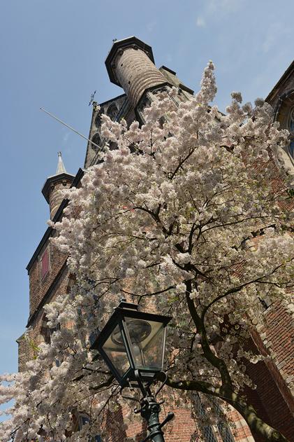 Leiden_16
