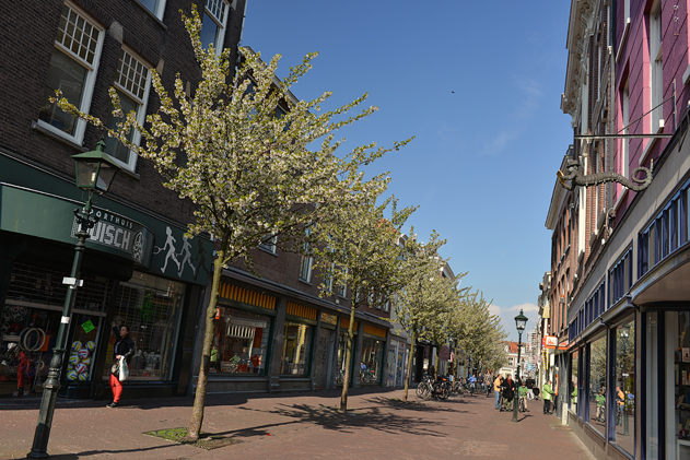 Delft_38